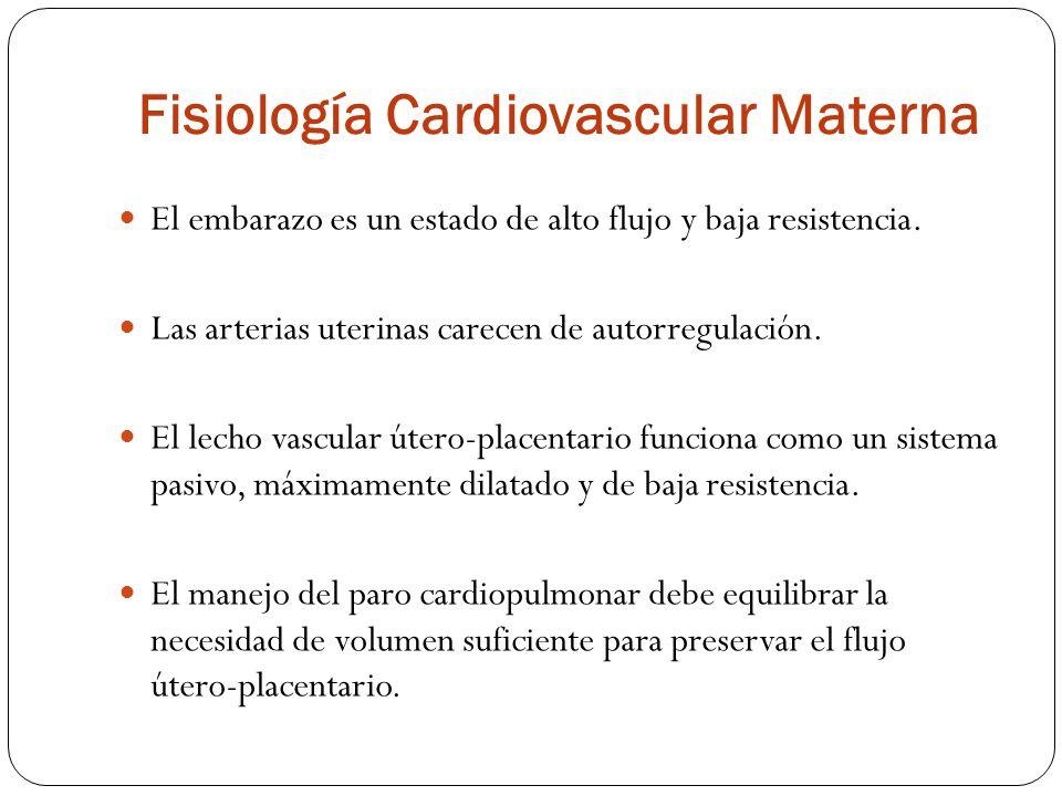 CardiovascularEfecto AumentadoVolumen plasmático al 40- 50% pero volumen de eritrocitos en sólo 20%.