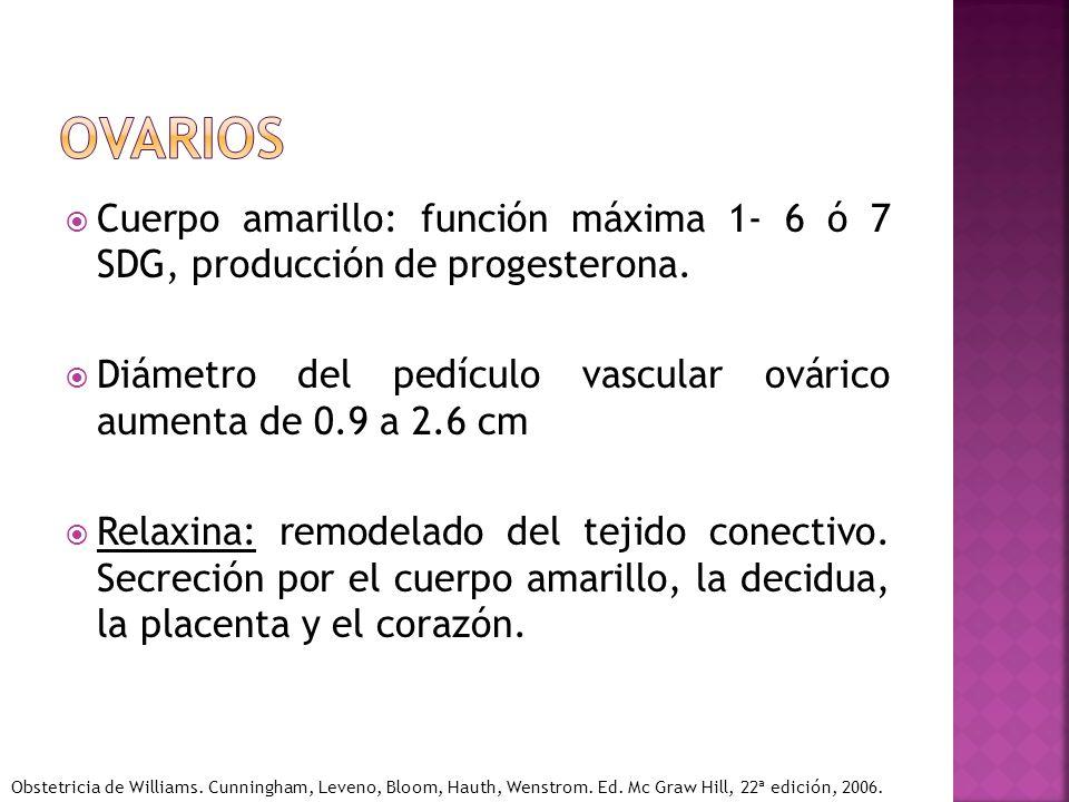 Cuerpo amarillo: función máxima 1- 6 ó 7 SDG, producción de progesterona. Diámetro del pedículo vascular ovárico aumenta de 0.9 a 2.6 cm Relaxina: rem