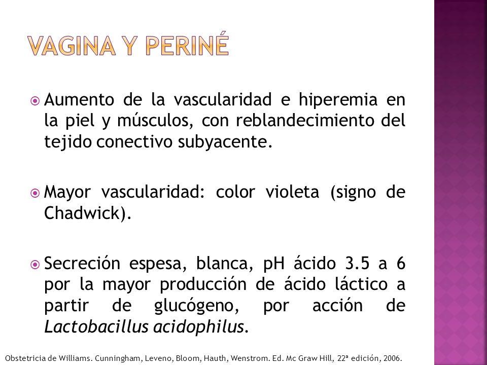 Aumento de la vascularidad e hiperemia en la piel y músculos, con reblandecimiento del tejido conectivo subyacente. Mayor vascularidad: color violeta