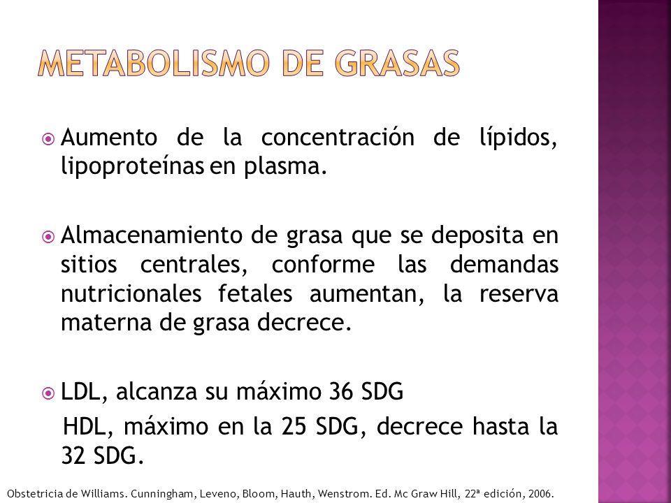 Aumento de la concentración de lípidos, lipoproteínas en plasma. Almacenamiento de grasa que se deposita en sitios centrales, conforme las demandas nu