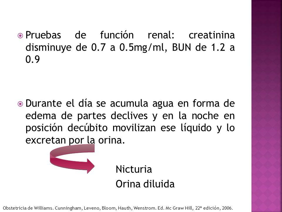 Pruebas de función renal: creatinina disminuye de 0.7 a 0.5mg/ml, BUN de 1.2 a 0.9 Durante el día se acumula agua en forma de edema de partes declives