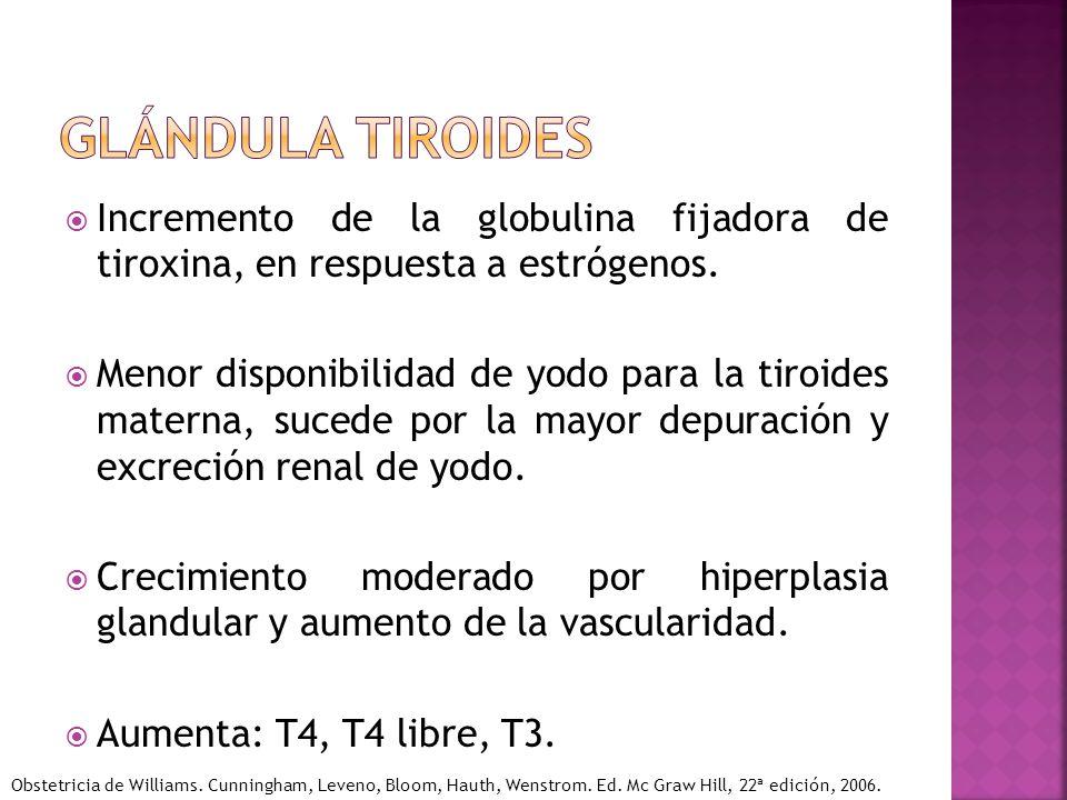 Incremento de la globulina fijadora de tiroxina, en respuesta a estrógenos. Menor disponibilidad de yodo para la tiroides materna, sucede por la mayor