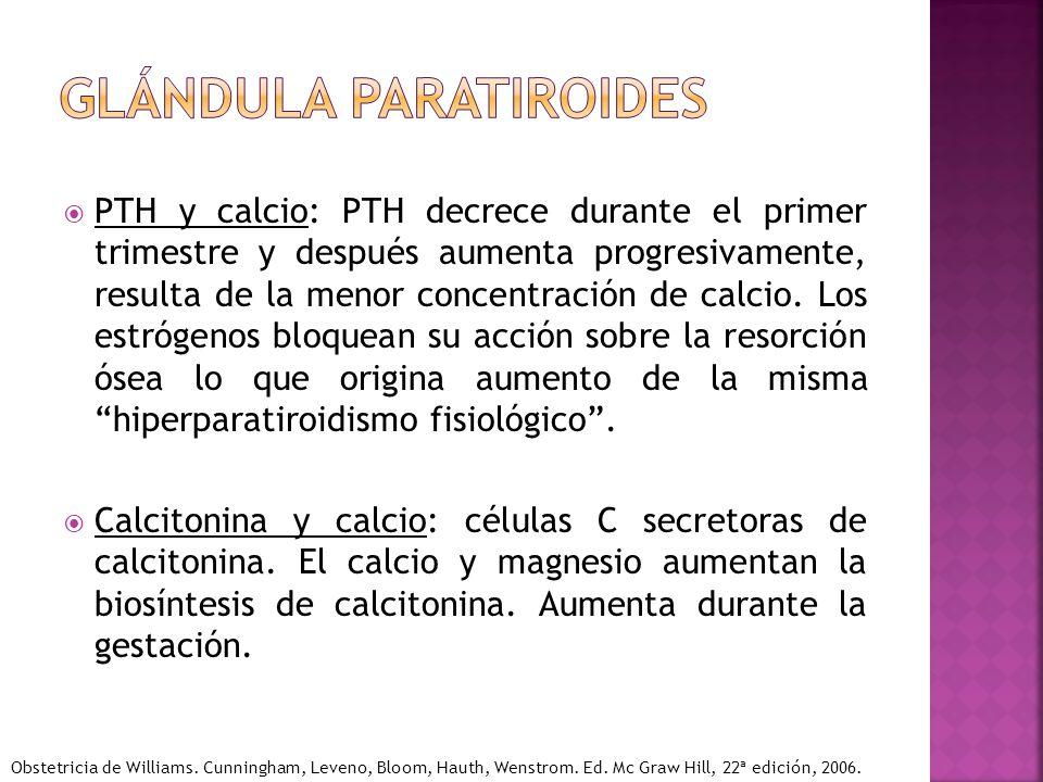 PTH y calcio: PTH decrece durante el primer trimestre y después aumenta progresivamente, resulta de la menor concentración de calcio. Los estrógenos b
