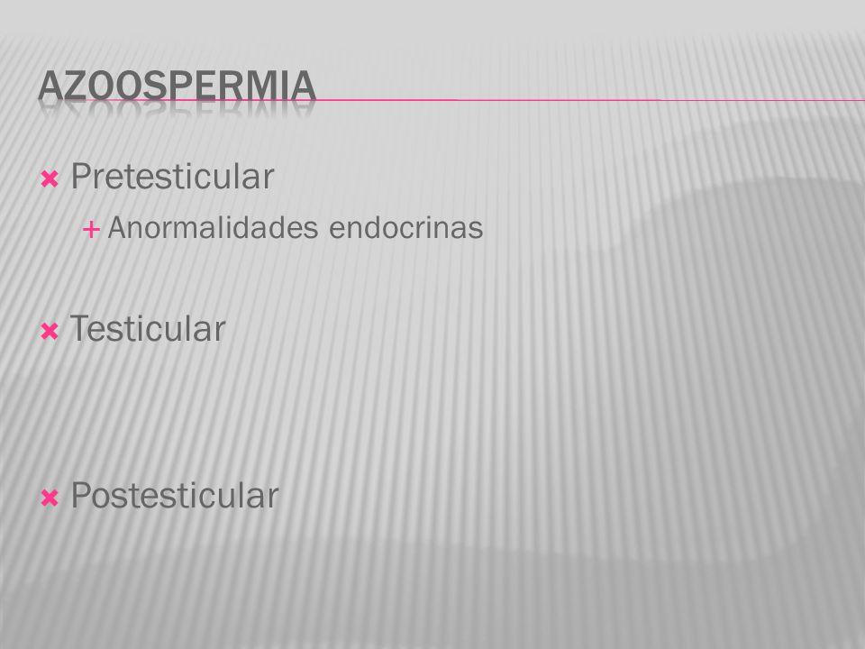 Pretesticular Anormalidades endocrinas Testicular Postesticular