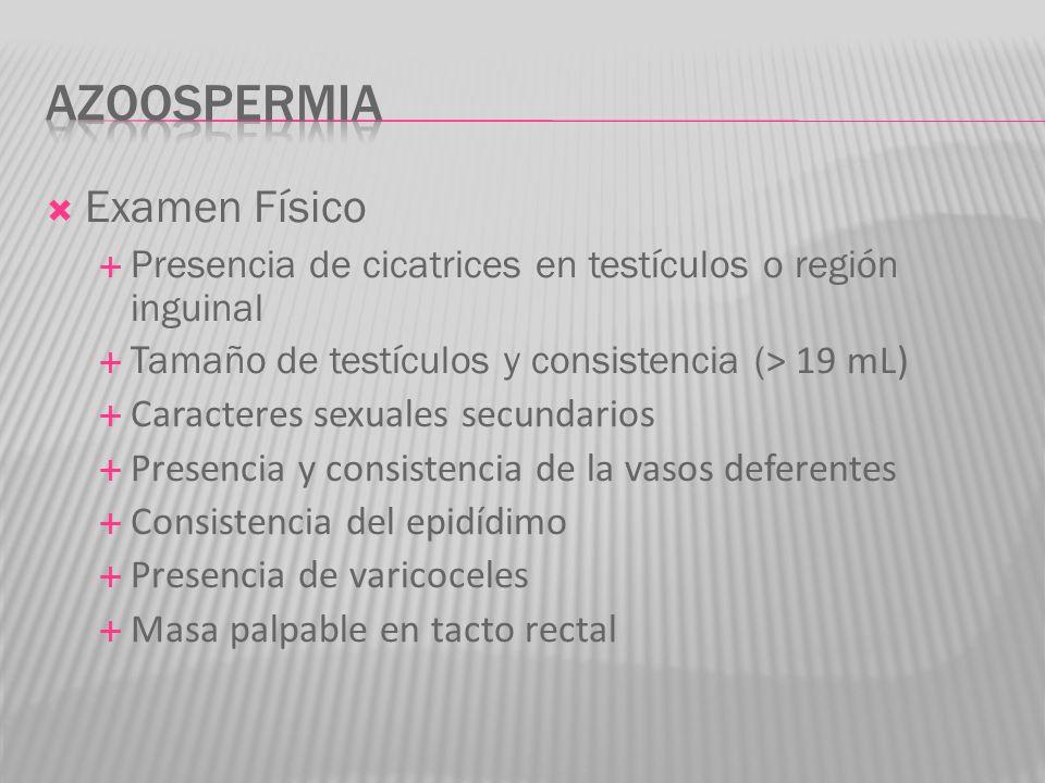 Examen Físico Presencia de cicatrices en testículos o región inguinal Tamaño de testículos y consistencia ( > 19 mL) Caracteres sexuales secundarios P