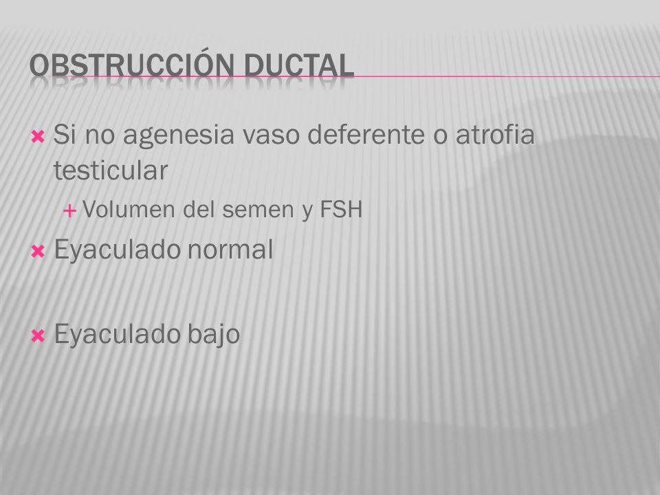 Si no agenesia vaso deferente o atrofia testicular Volumen del semen y FSH Eyaculado normal Eyaculado bajo