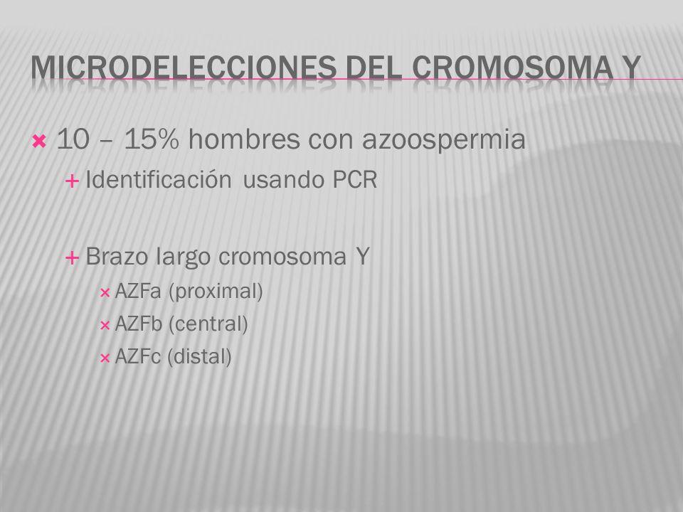 10 – 15% hombres con azoospermia Identificación usando PCR Brazo largo cromosoma Y AZFa (proximal) AZFb (central) AZFc (distal)