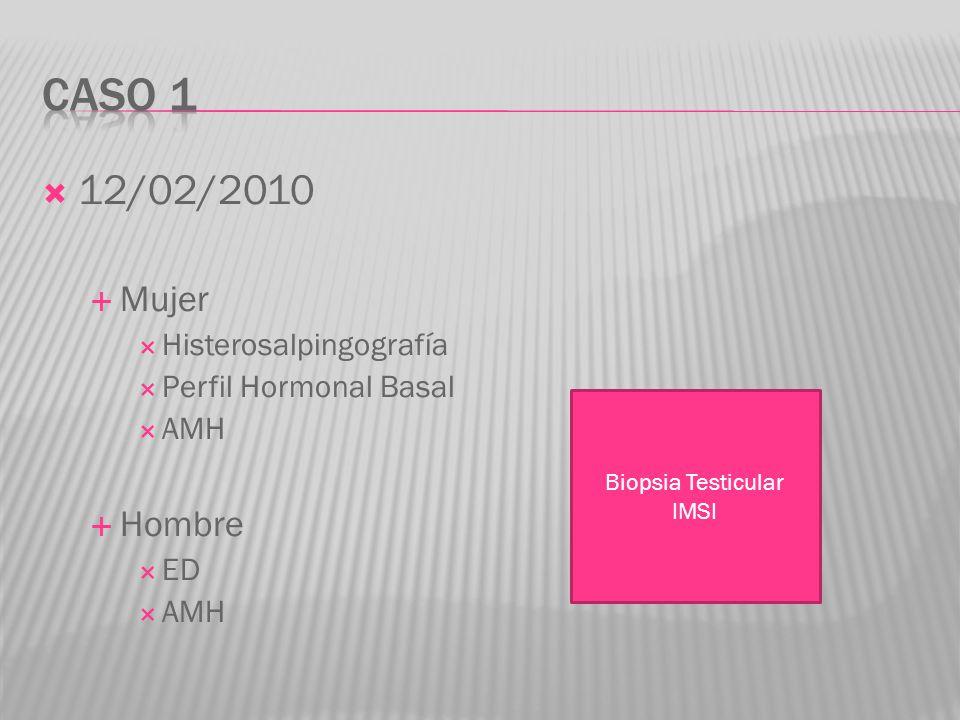 12/02/2010 Mujer Histerosalpingografía Perfil Hormonal Basal AMH Hombre ED AMH Biopsia Testicular IMSI