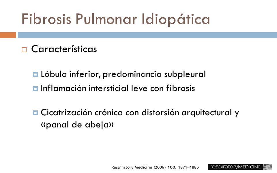 Fibrosis Pulmonar Idiopática Características Lóbulo inferior, predominancia subpleural Inflamación intersticial leve con fibrosis Cicatrización crónic
