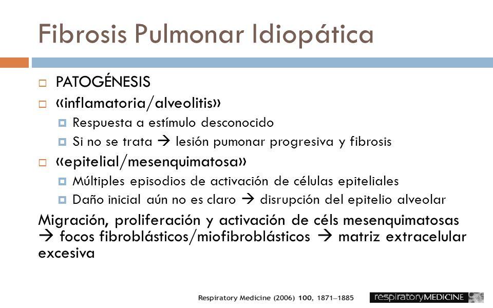 Fibrosis Pulmonar Idiopática PATOGÉNESIS «inflamatoria/alveolitis» Respuesta a estímulo desconocido Si no se trata lesión pumonar progresiva y fibrosi