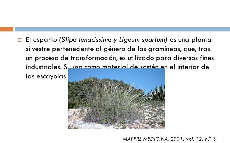 El esparto (Stipa tenacissima y Ligeum spartum) es una planta silvestre perteneciente al género de las gramíneas, que, tras un proceso de transformaci