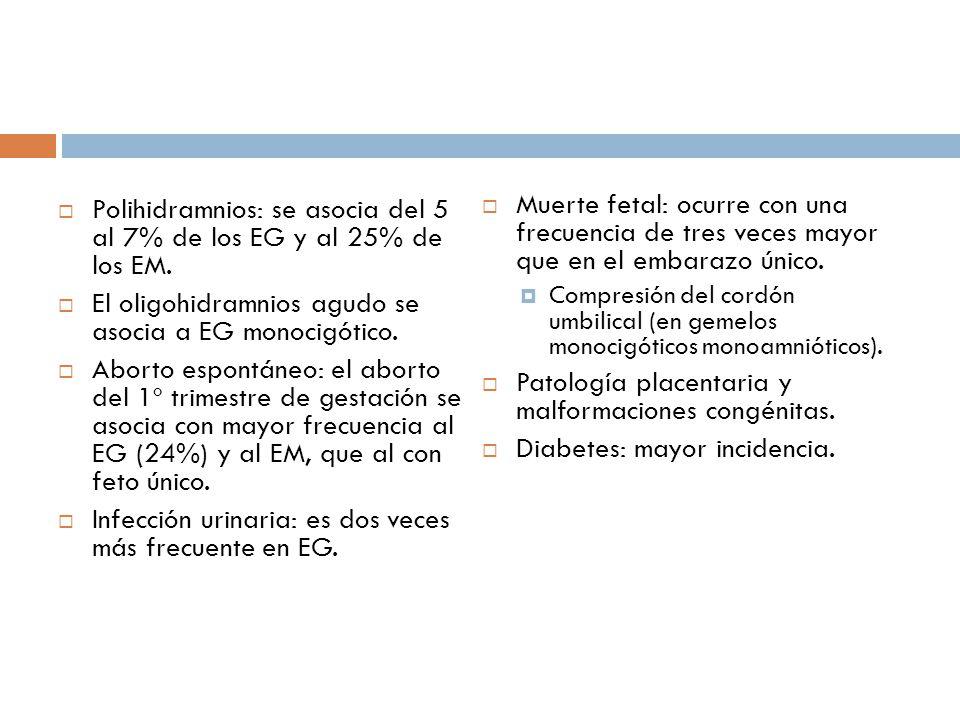 Polihidramnios: se asocia del 5 al 7% de los EG y al 25% de los EM. El oligohidramnios agudo se asocia a EG monocigótico. Aborto espontáneo: el aborto