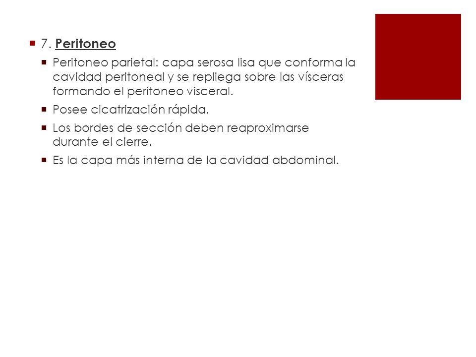7. Peritoneo Peritoneo parietal: capa serosa lisa que conforma la cavidad peritoneal y se repliega sobre las vísceras formando el peritoneo visceral.