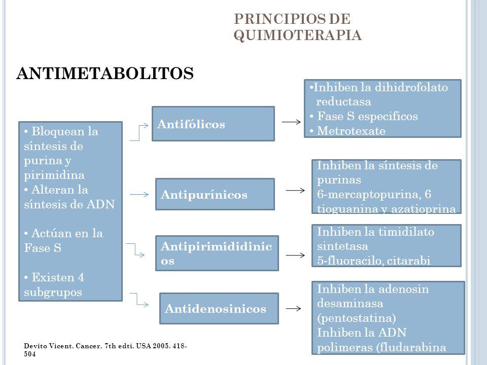 PRINCIPIOS DE QUIMIOTERAPIA ANTIMETABOLITOS Devito Vicent. Cancer. 7th edti. USA 2005. 418- 504 Bloquean la síntesis de purina y pirimidina Alteran la
