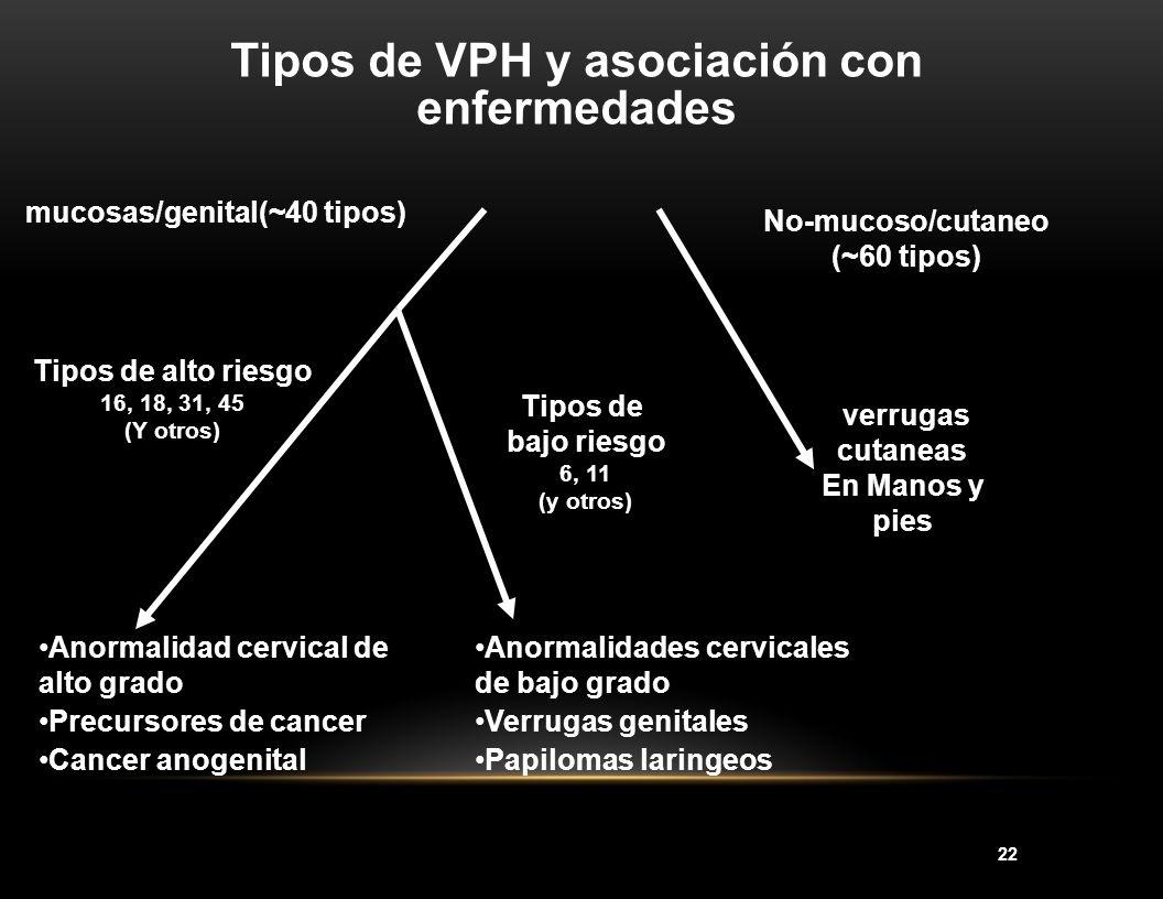 22 Tipos de VPH y asociación con enfermedades No-mucoso/cutaneo (~60 tipos) verrugas cutaneas En Manos y pies mucosas/genital(~40 tipos) Tipos de alto