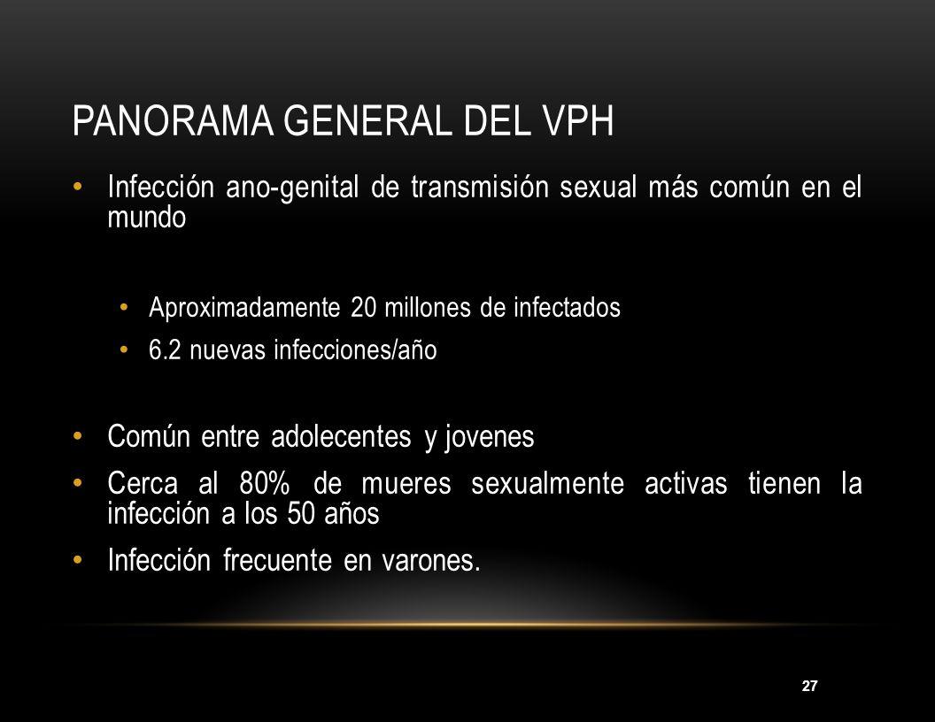 27 PANORAMA GENERAL DEL VPH Infección ano-genital de transmisión sexual más común en el mundo Aproximadamente 20 millones de infectados 6.2 nuevas inf