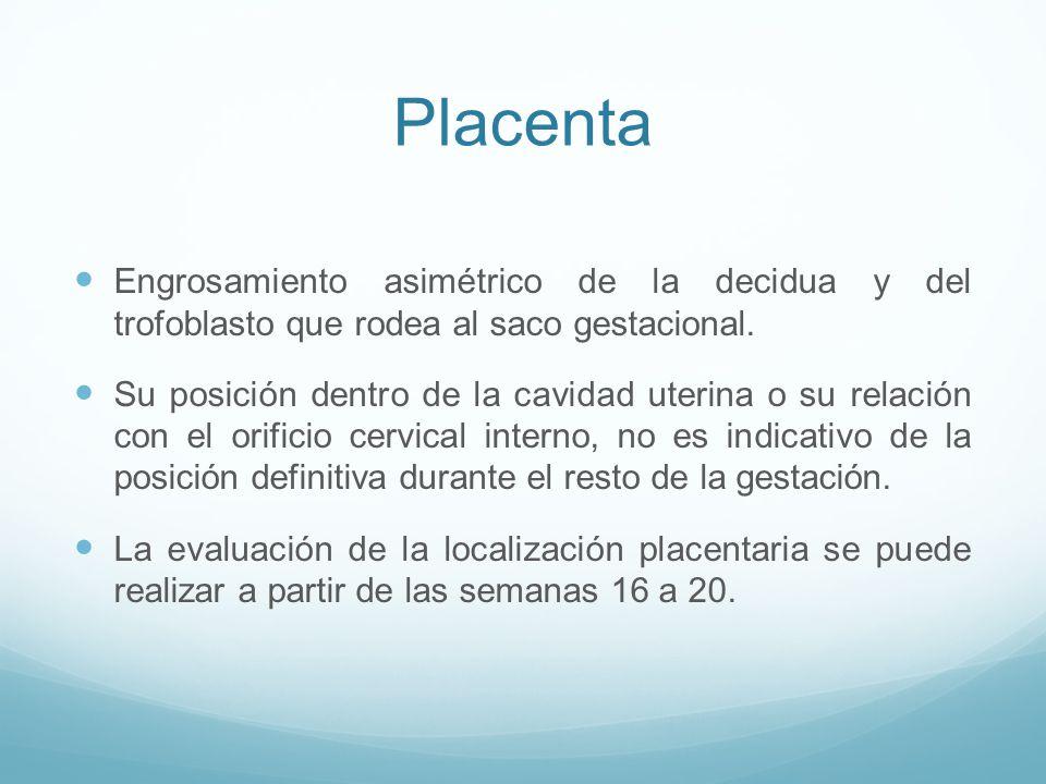 Placenta Engrosamiento asimétrico de la decidua y del trofoblasto que rodea al saco gestacional.