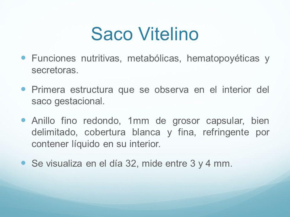 Saco Vitelino Funciones nutritivas, metabólicas, hematopoyéticas y secretoras.