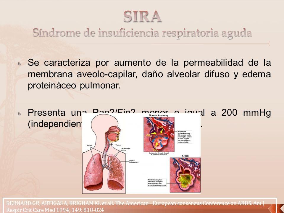 Se caracteriza por aumento de la permeabilidad de la membrana aveolo-capilar, daño alveolar difuso y edema proteináceo pulmonar. Presenta una Pao2/Fio