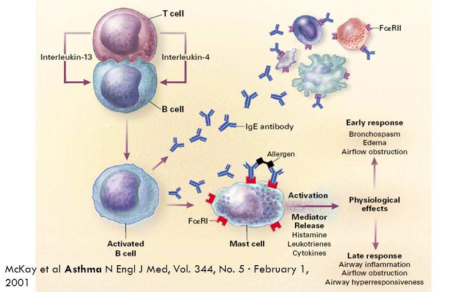 McKay et al Asthma N Engl J Med, Vol. 344, No. 5 · February 1, 2001