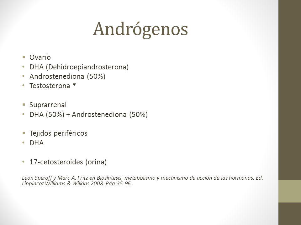 Andrógenos Ovario DHA (Dehidroepiandrosterona) Androstenediona (50%) Testosterona * Suprarrenal DHA (50%) + Androstenediona (50%) Tejidos periféricos