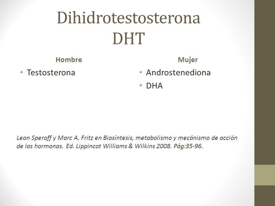 Dihidrotestosterona DHT Hombre Testosterona Mujer Androstenediona DHA Leon Speroff y Marc A. Fritz en Biosíntesis, metabolismo y mecánismo de acción d