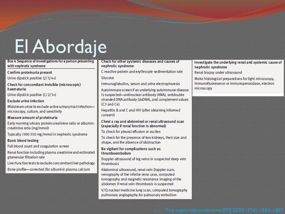 El Abordaje 1.The nephrotic syndrome BMJ 2008 (336) 1883-1887