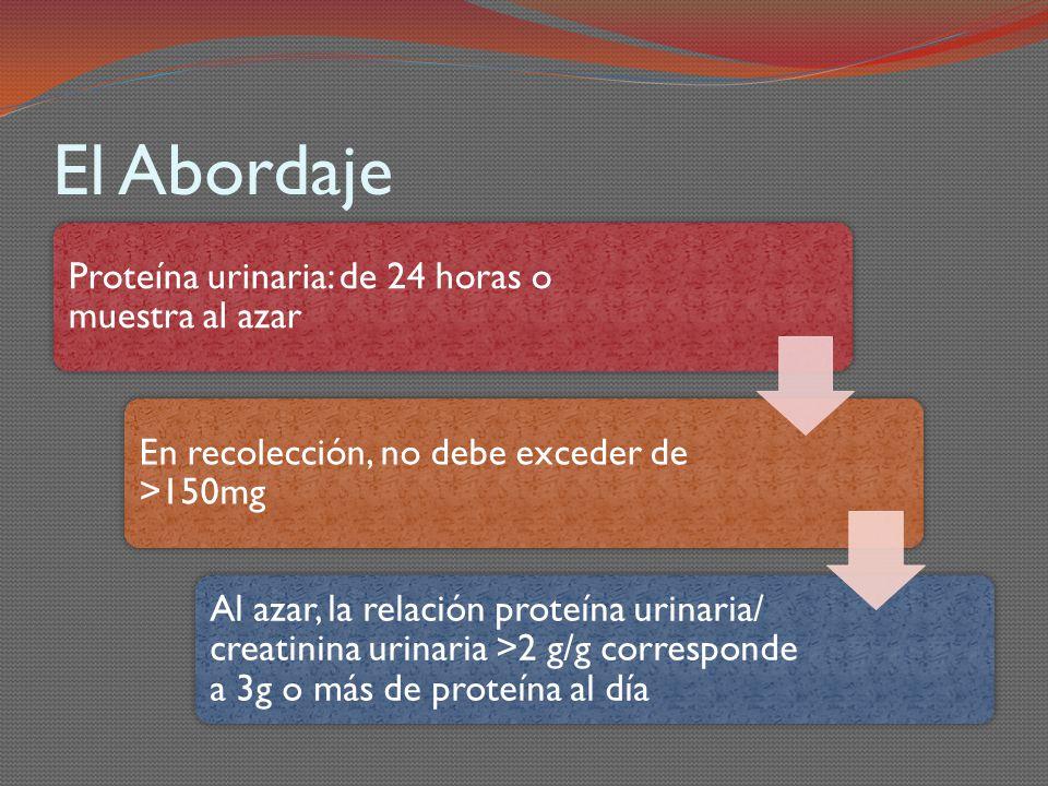 El Abordaje Proteína urinaria: de 24 horas o muestra al azar En recolección, no debe exceder de >150mg Al azar, la relación proteína urinaria/ creatin
