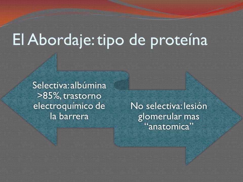 El Abordaje: tipo de proteína Selectiva: albúmina >85%, trastorno electroquímico de la barrera No selectiva: lesión glomerular mas anatomica