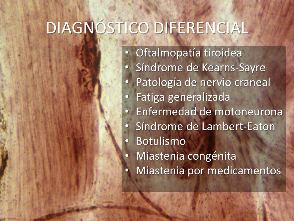 DIAGNÓSTICO DIFERENCIAL Oftalmopatía tiroidea Oftalmopatía tiroidea Síndrome de Kearns-Sayre Síndrome de Kearns-Sayre Patología de nervio craneal Patología de nervio craneal Fatiga generalizada Fatiga generalizada Enfermedad de motoneurona Enfermedad de motoneurona Síndrome de Lambert-Eaton Síndrome de Lambert-Eaton Botulismo Botulismo Miastenia congénita Miastenia congénita Miastenia por medicamentos Miastenia por medicamentos