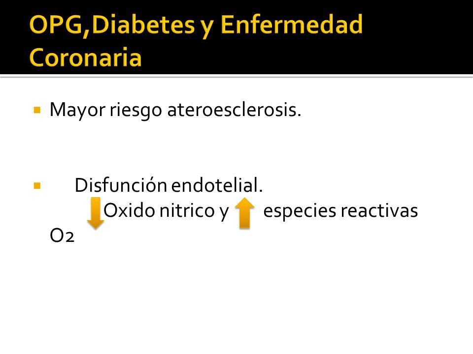 Mayor riesgo ateroesclerosis. Disfunción endotelial. Oxido nitrico y especies reactivas O2