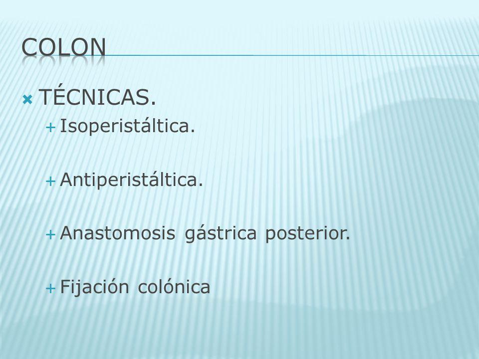 TÉCNICAS. Isoperistáltica. Antiperistáltica. Anastomosis gástrica posterior. Fijación colónica