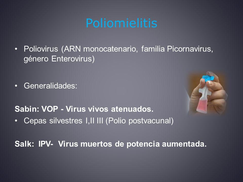 Poliomielitis Poliovirus (ARN monocatenario, familia Picornavirus, género Enterovirus) Generalidades: Sabin: VOP - Virus vivos atenuados.