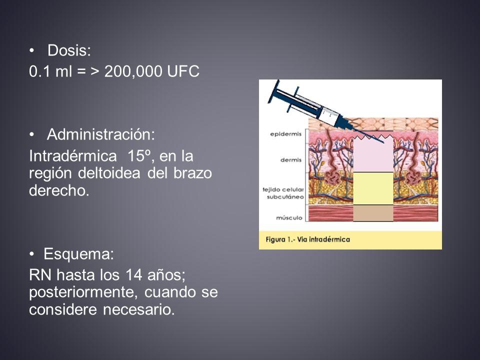 Dosis: 0.1 ml = > 200,000 UFC Administración: Intradérmica 15º, en la región deltoidea del brazo derecho.