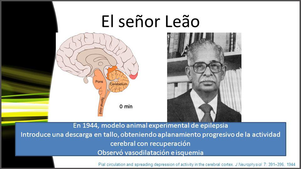 El señor Leão En 1944, modelo animal experimental de epilepsia Introduce una descarga en tallo, obteniendo aplanamiento progresivo de la actividad cerebral con recuperación Observó vasodilatación e isquemia Pial circulation and spreading depression of activity in the cerebral cortex.
