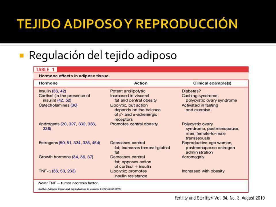 Regulación del tejido adiposo