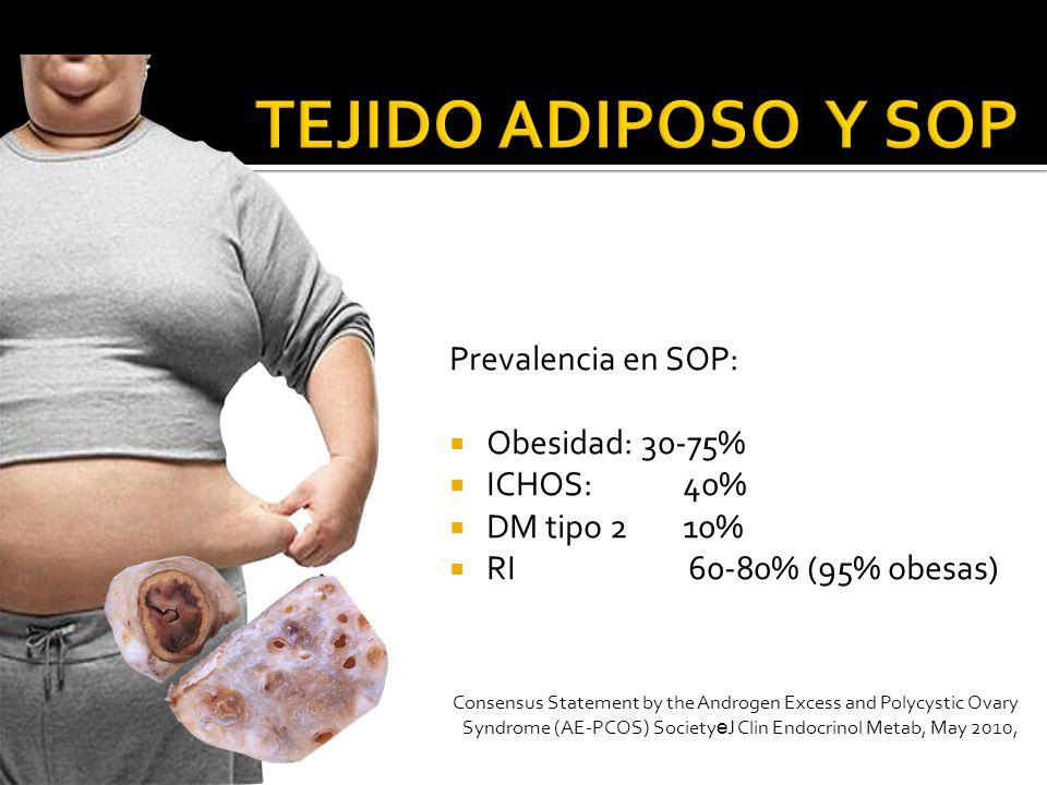 Importancia de la distribución del tejido adiposo en reproducción.