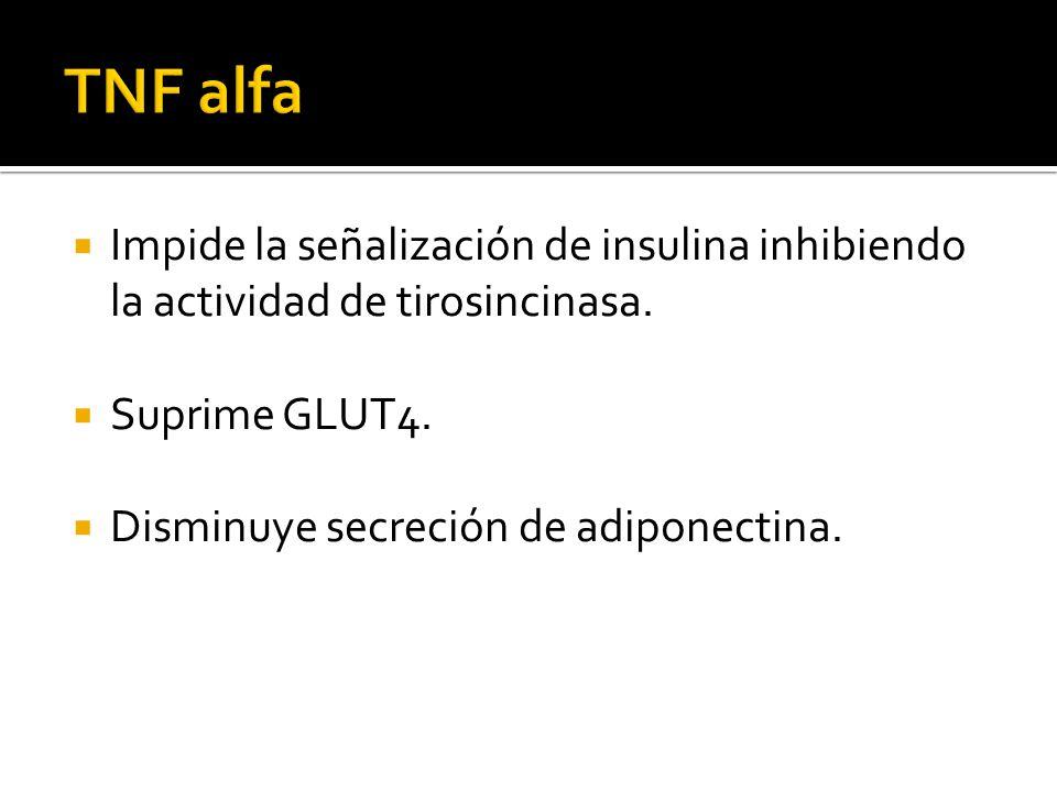 Impide la señalización de insulina inhibiendo la actividad de tirosincinasa. Suprime GLUT4. Disminuye secreción de adiponectina.
