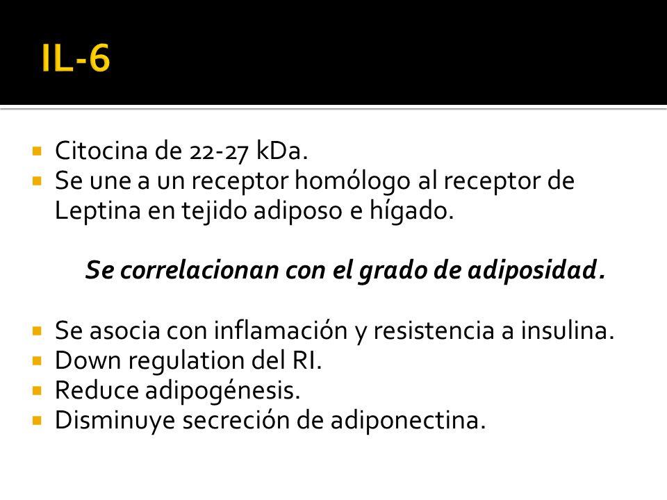 Citocina de 22-27 kDa. Se une a un receptor homólogo al receptor de Leptina en tejido adiposo e hígado. Se correlacionan con el grado de adiposidad. S