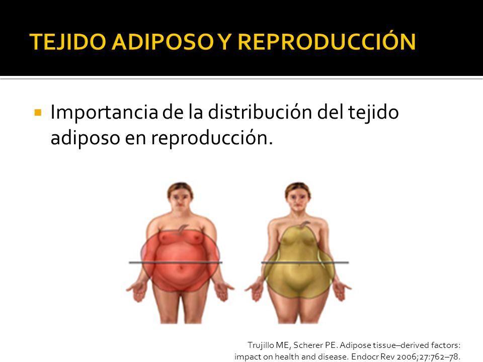 Proteína de 30 kDa, 244 AA.Crom 3q27 La que más se secreta por el adipocito.