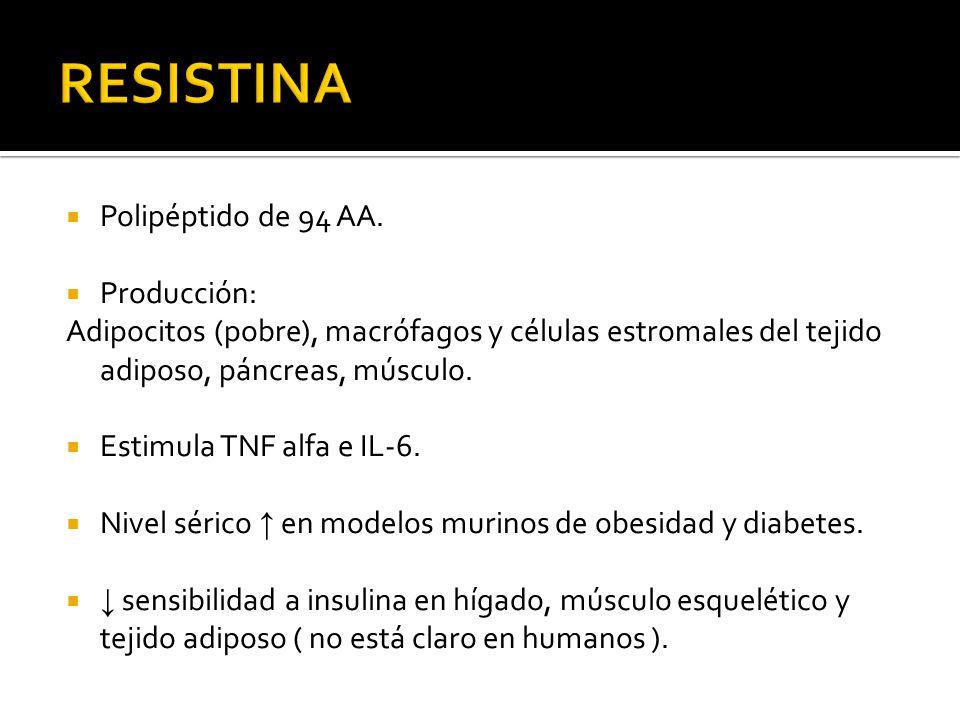 Polipéptido de 94 AA. Producción: Adipocitos (pobre), macrófagos y células estromales del tejido adiposo, páncreas, músculo. Estimula TNF alfa e IL-6.