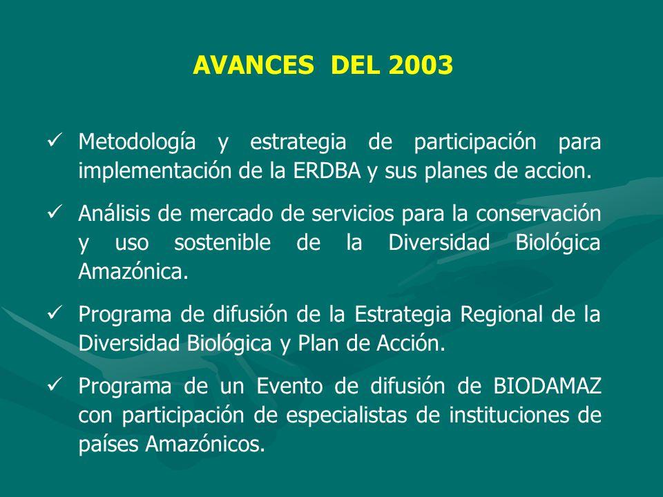 AVANCES DEL 2003 Metodología y estrategia de participación para implementación de la ERDBA y sus planes de accion.