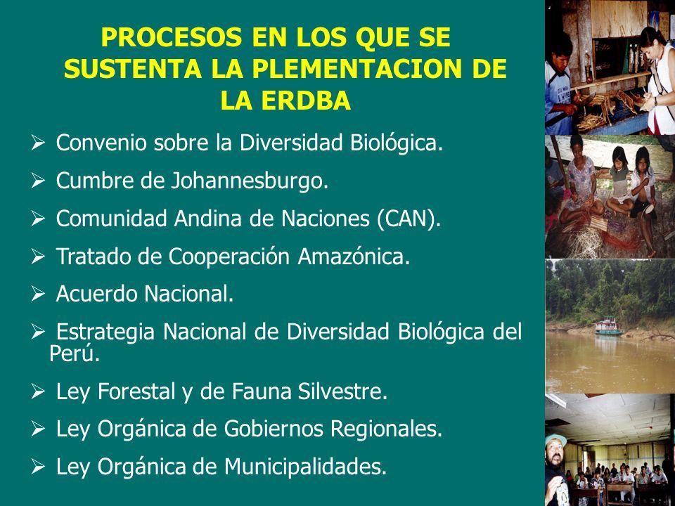 PROCESOS EN LOS QUE SE SUSTENTA LA PLEMENTACION DE LA ERDBA Convenio sobre la Diversidad Biológica.
