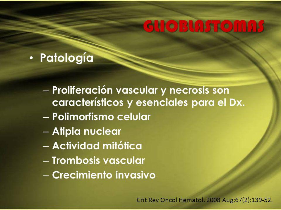 GLIOBLASTOMAS Patología – Proliferación vascular y necrosis son característicos y esenciales para el Dx. – Polimorfismo celular – Atipia nuclear – Act