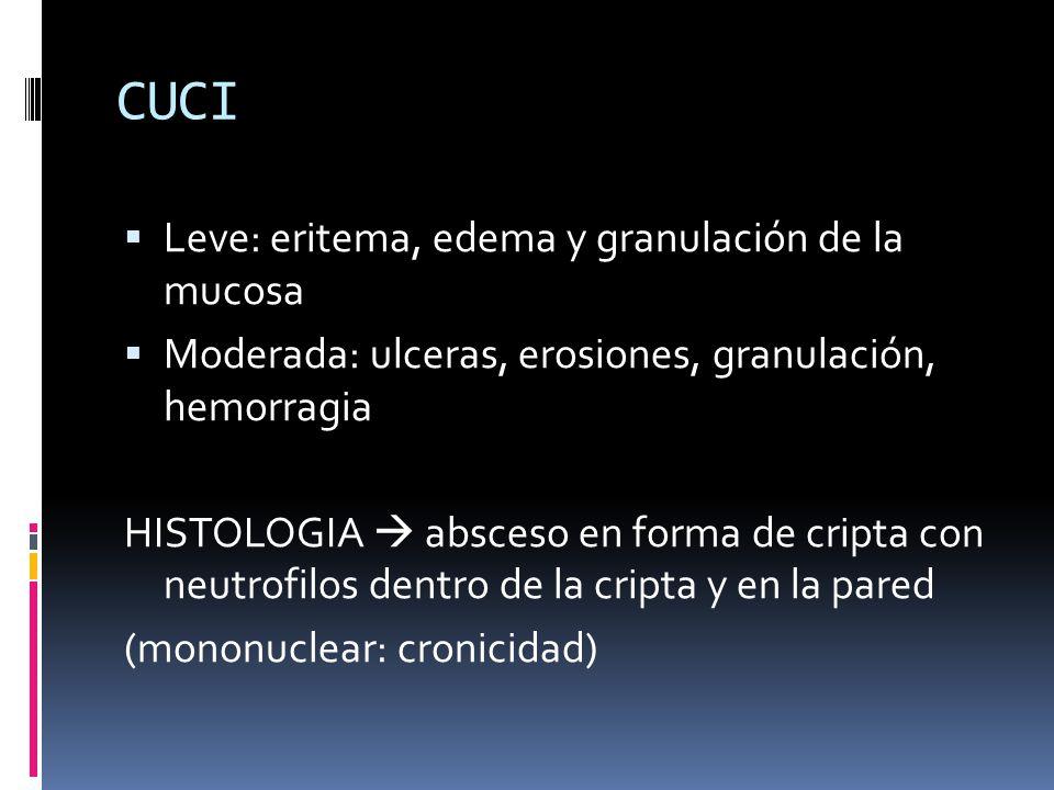 CUCI Leve: eritema, edema y granulación de la mucosa Moderada: ulceras, erosiones, granulación, hemorragia HISTOLOGIA absceso en forma de cripta con n