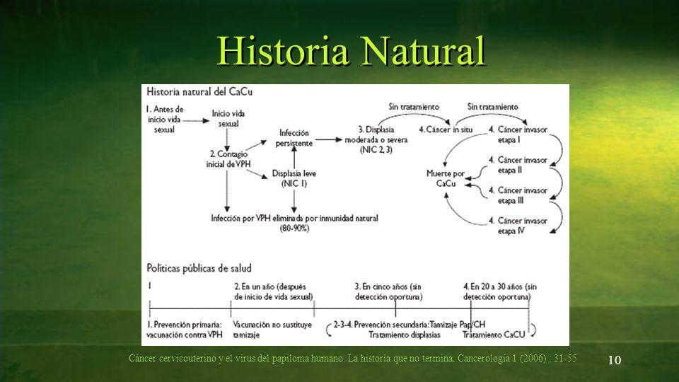 Historia Natural 10 Cáncer cervicouterino y el virus del papiloma humano. La historia que no termina. Cancerología 1 (2006) : 31-55