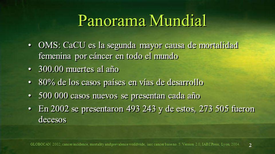 2 Panorama Mundial OMS: CaCU es la segunda mayor causa de mortalidad femenina por cáncer en todo el mundo 300.00 muertes al año 80% de los casos paíse