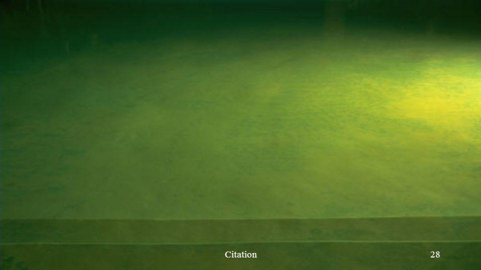 Citation28