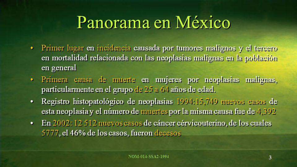 3 Panorama en México Primer lugar en incidencia causada por tumores malignos y el tercero en mortalidad relacionada con las neoplasias malignas en la