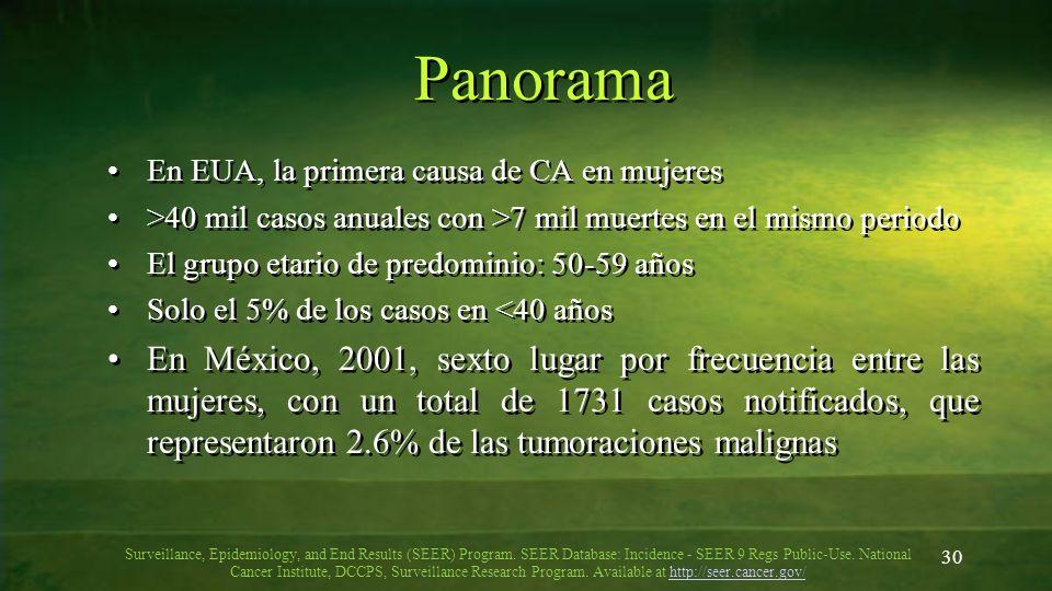 30 Panorama En EUA, la primera causa de CA en mujeres >40 mil casos anuales con >7 mil muertes en el mismo periodo El grupo etario de predominio: 50-5